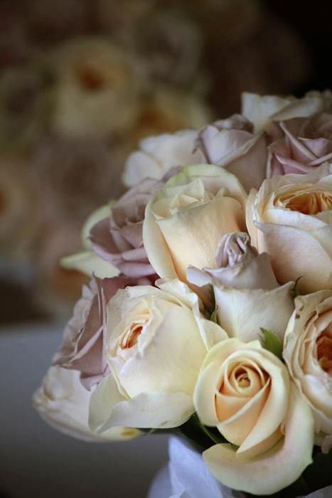 Vintage David Austins and Roses